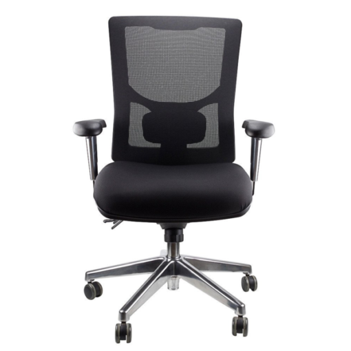 Selville_Ergonomic_Office_Chair_1_grande.png